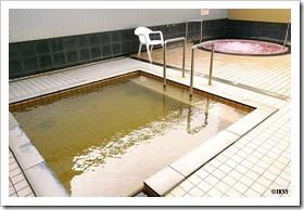 むかわ温泉四季の湯