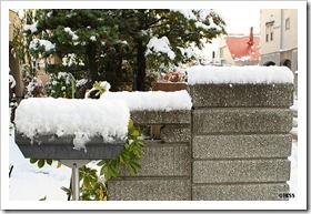 2010札幌積雪7センチ
