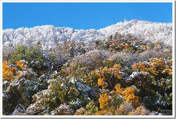 雪化粧した藻岩山