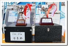 第52回札幌市民体育大会リュージュ競技大会