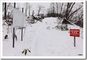 2012年初登山 藻岩山