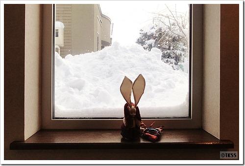 玄関の外の雪