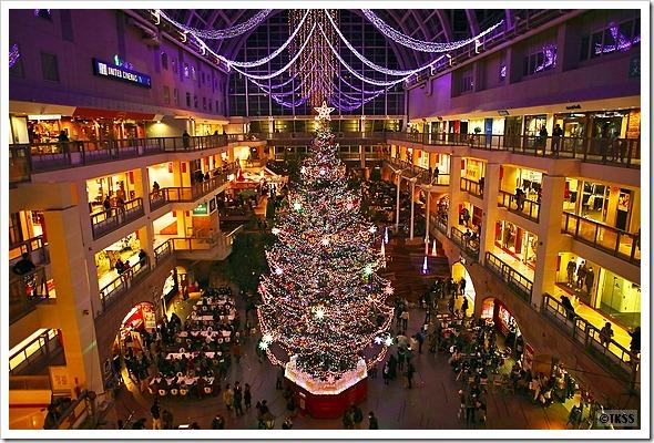 2016 サッポロファクトリージャンボクリスマスツリー点灯式
