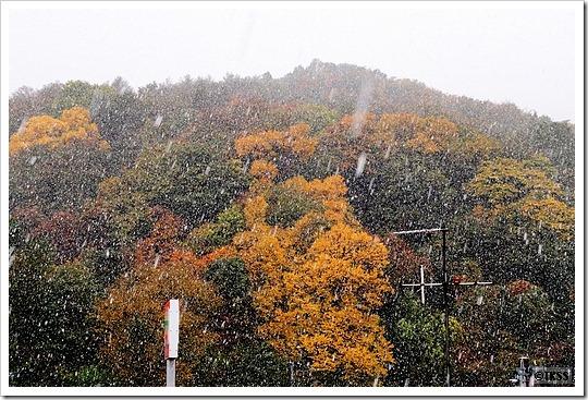 札幌初雪2010