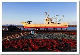 石狩湾新港 東埠頭
