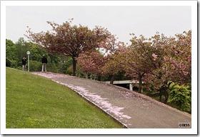 手宮緑化植物園