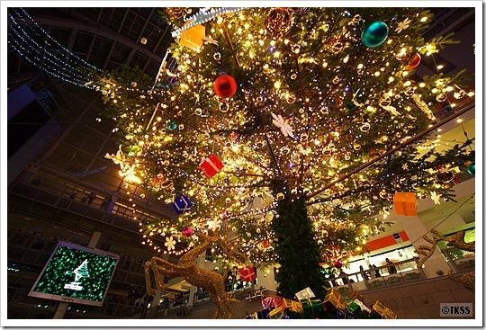 2009 サッポロファクトリーのジャンボクリスマスツリー