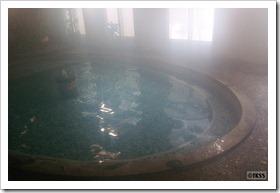湯元館 内風呂
