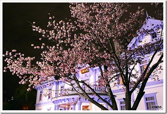 夜桜・豊平館