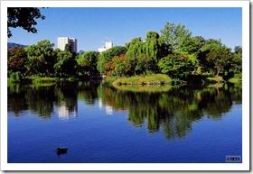 菖蒲池@中島公園