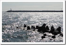 伊達の海岸