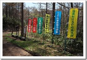 自然歩道(西岡~真栄・有明ルート)
