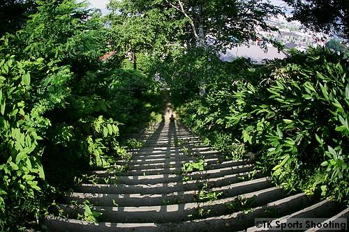 水天宮の階段