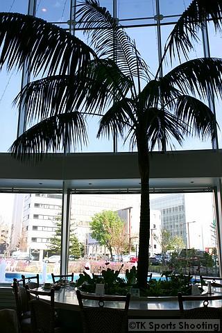 ブッフェレストラン ハプナ(HAPUNA)