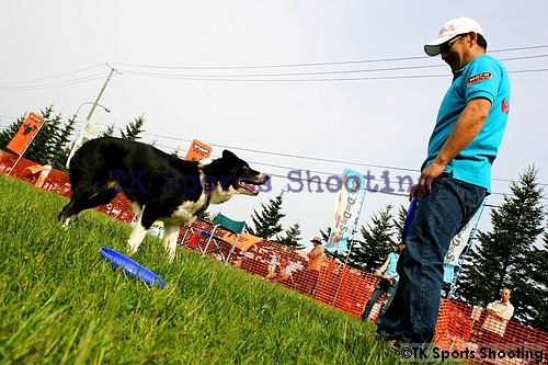Club-DDS ACANA CUP DiscDog DISTANCE GAME2006 FirstStage