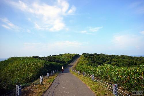 天売島サイクリング