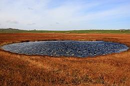 雨竜沼湿原の池塘(ちとう)