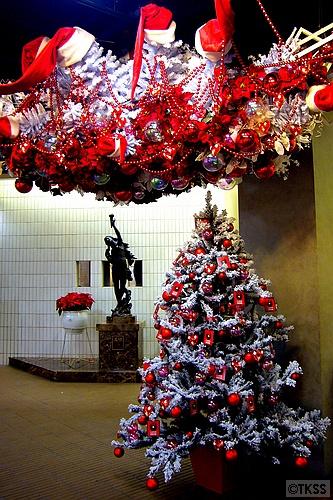 オーロラタウンのクリスマスツリー