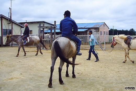 道産子乗馬