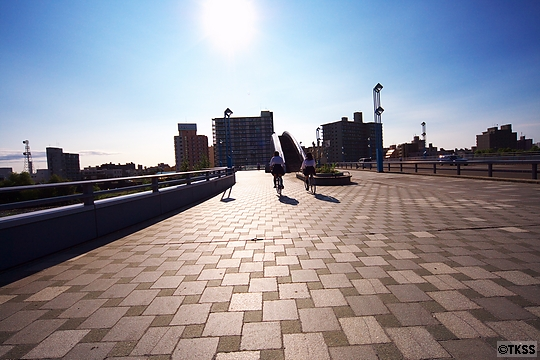 幌平橋の上
