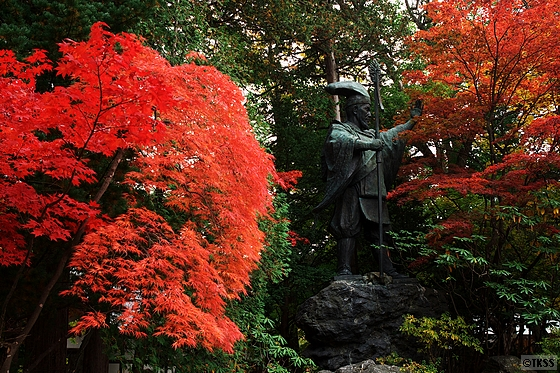 北海道神宮の紅葉