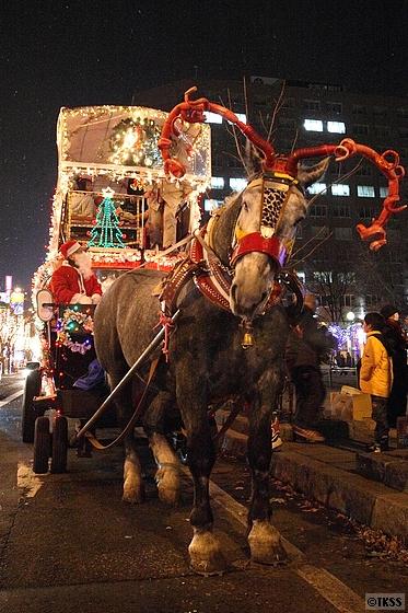 クリスマス仕様の観光幌馬車