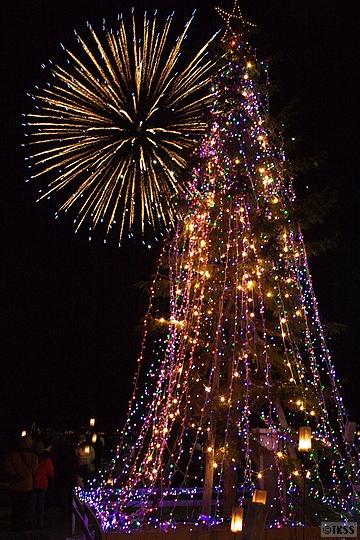 Holy Light Christmas in TOYA