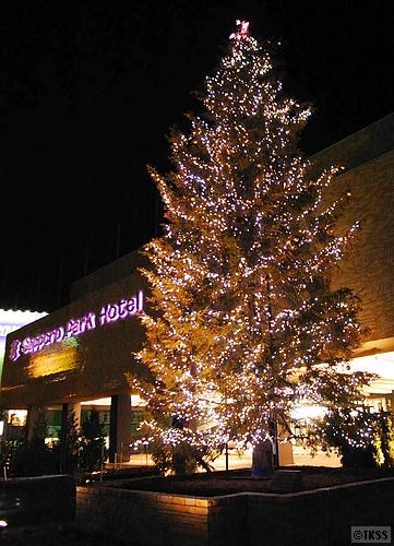 札幌パークホテルのクリスマスツリー