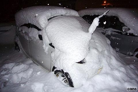 アイに積もった雪