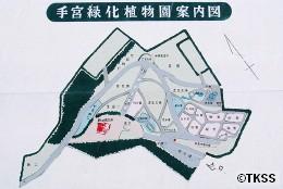 手宮緑化植物園案内図