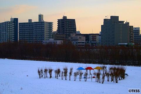 冬の豊平川河川敷